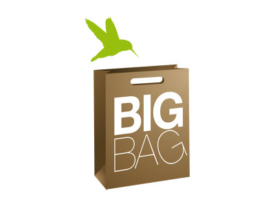 Logo Bigbag